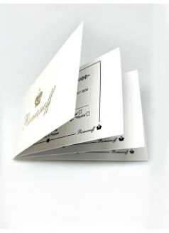 Стиль моделей 30528G1BL-440546G1BL «Romanoff»